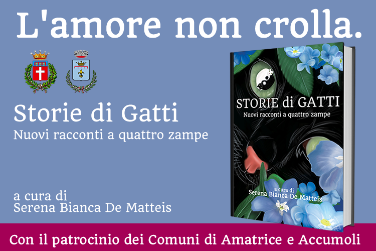 Storie di gatti - L'amore non crolla
