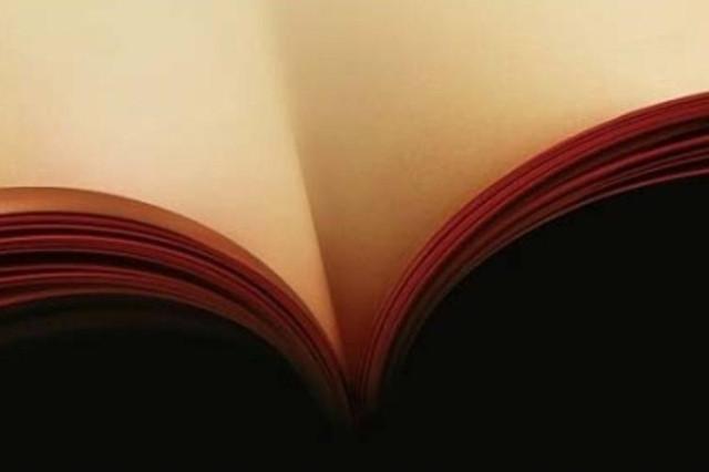 Quarta di copertina - illusione ottica