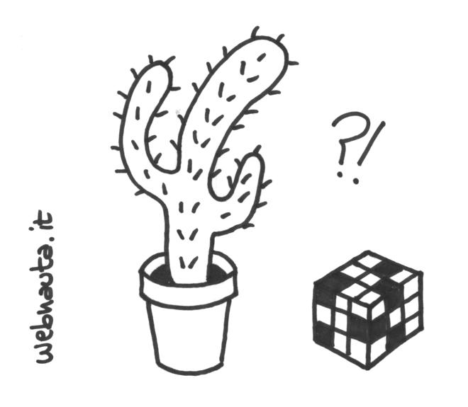 Oracolo manuale per scrittrici e scrittori - il mio cactus